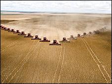 El boom de la soja aumentó el uso de agrotóxicos. (Imagen de Corbis)