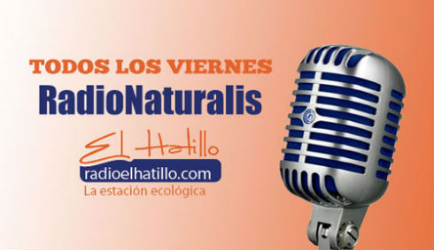 image_radionaturalis