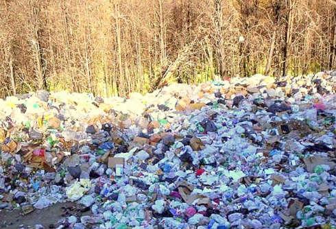 contaminación-de-bosques