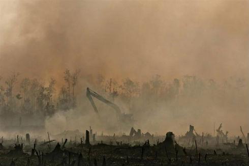 Indonesia-incendios