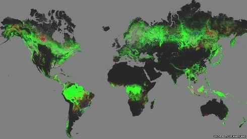 131115103750_mapa_bosques_976x549_bbc_nocredit