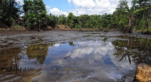 Amazonia-Chernobil1