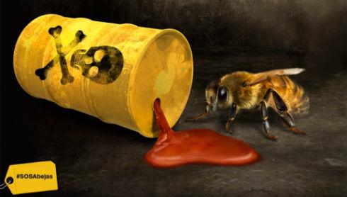 abejas-intoxicadas