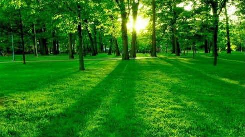 naturaleza-paisaje-600x337