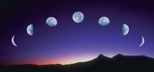 el-calendario-lunar-para-huerto-y-el-jardin-600x450