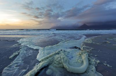 Según la OMM el dióxido de carbono permanece en la atmósfera durante miles de años y en el océano aún mucho más. EFE/Nic Bothma