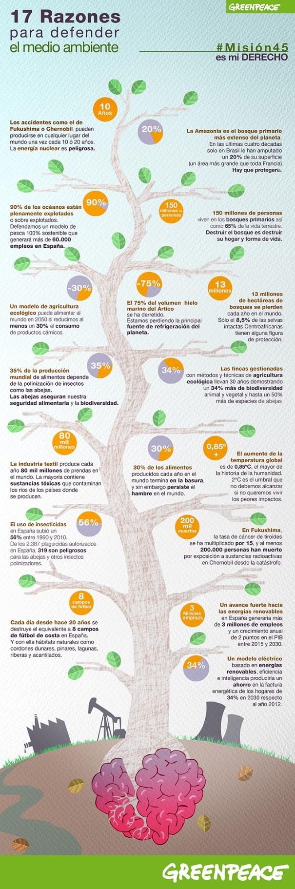 infografia-medio-ambiente-greenpeace