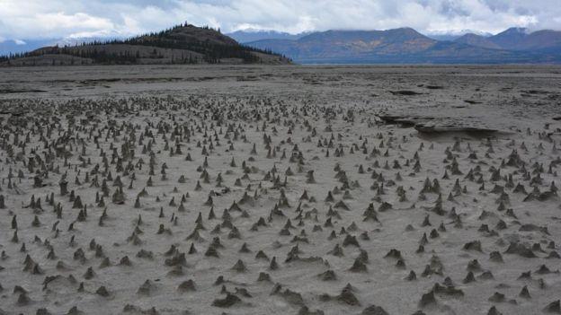 La falta de agua dejó expuesto el lecho del río. Imagen: JIM BEST/UNIVERSIDAD DE ILLINOIS