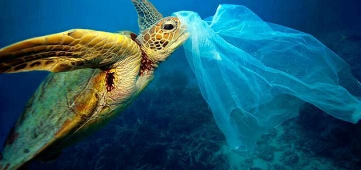 oceanos-amenazados-plastico-5