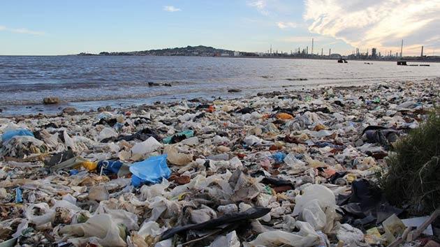 Imagen: elobservador.com.uy