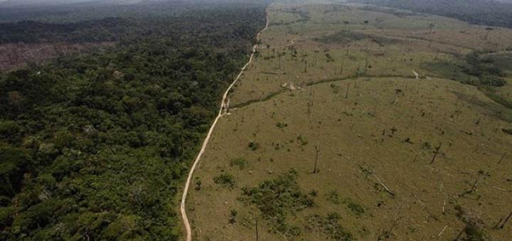 deforestacion6-660x550