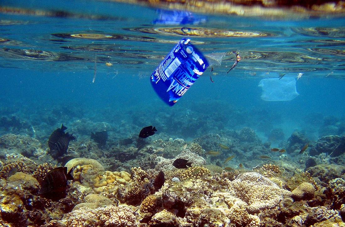 Foto de archivo de plásticos que contaminan el hábitat marino y contribuyen a su destrucción. EFE/Mike Nelson.