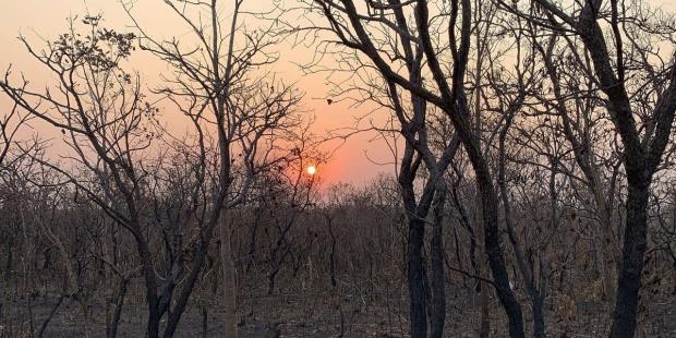 th_1cce678baa2865fe866ba90e481edd63_incendio-Amazonia-EFEverde